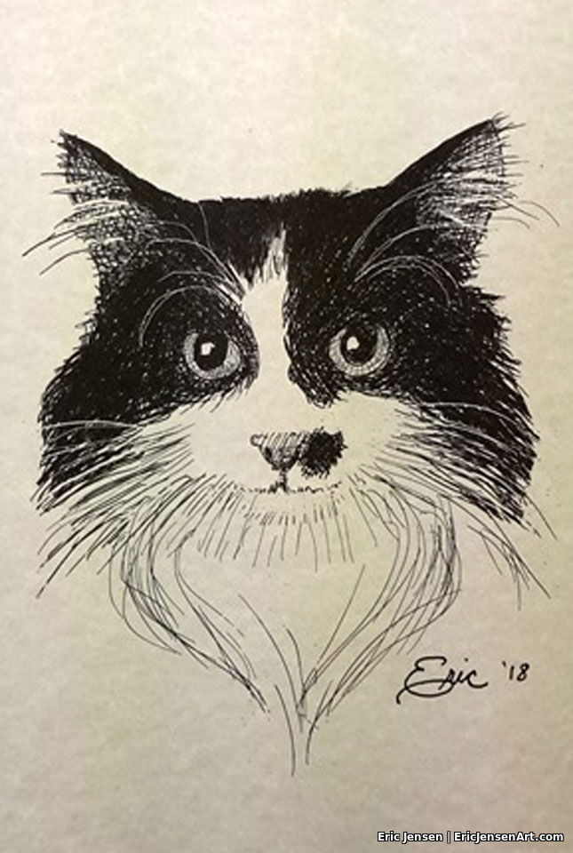 Hand drawn portrait of of cat by Oregon artist Eric Jensen